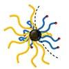Synthetic route-dependent intramolecular segregation in heteroarm core cross-linked star polymers as Janus-like nanoobjects